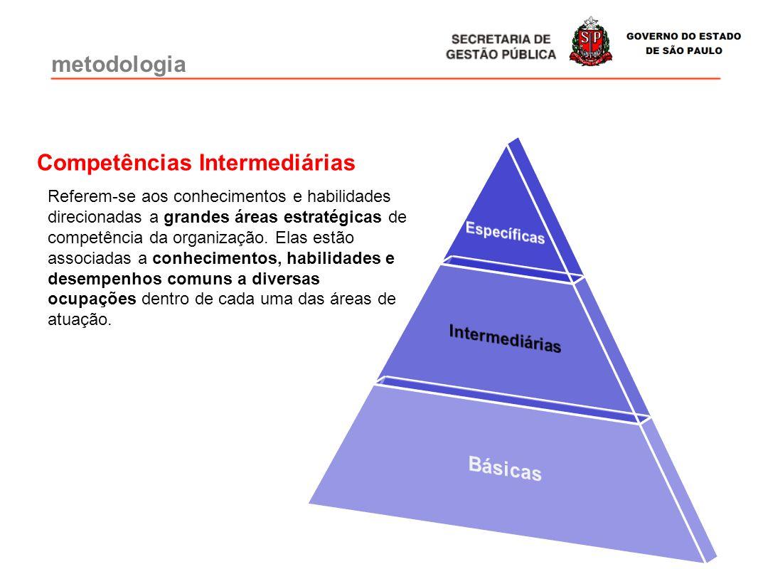 Referem-se aos conhecimentos e habilidades direcionadas a grandes áreas estratégicas de competência da organização. Elas estão associadas a conhecimen