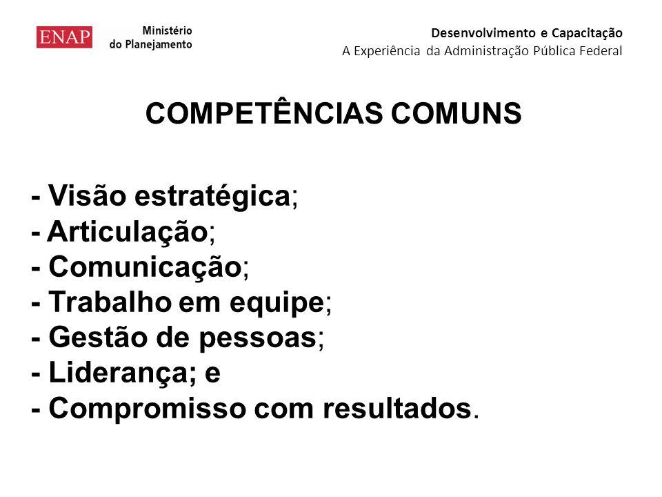 PROGRAMA DE FORMAÇÃO DIRIGENTES Desenvolvimento e Capacitação A Experiência da Administração Pública Federal