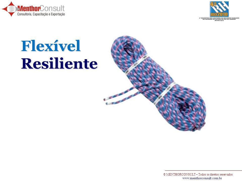 © MENTHORCONSULT – Todos os direitos reservados www.menthorconsult.com.br FlexívelResiliente