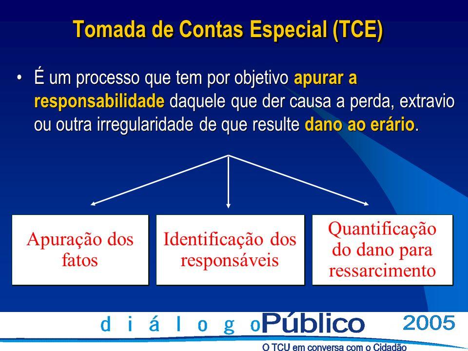 Tomada de Contas Especial (TCE) É um processo que tem por objetivo apurar a responsabilidade daquele que der causa a perda, extravio ou outra irregula
