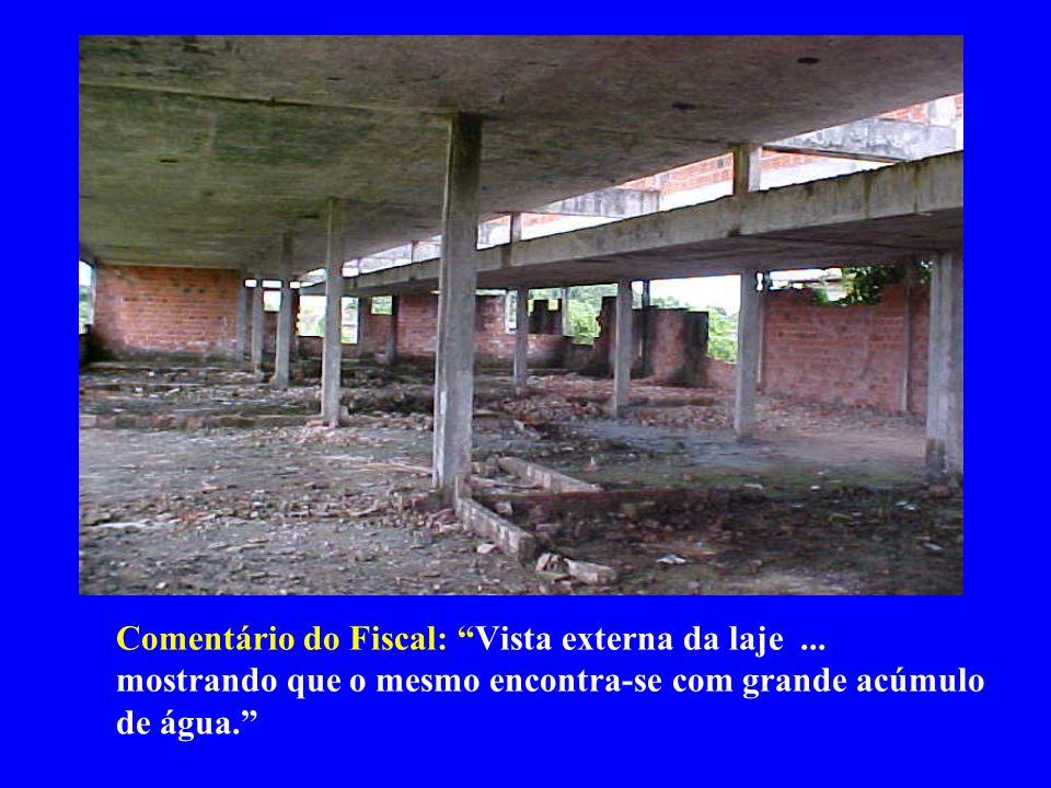 Comentário do Fiscal: Vista geral do pavilhão V, mostrando que o mesmo encontra-se apenas com os pilares de concreto armado executados e coberto pela vegetação.