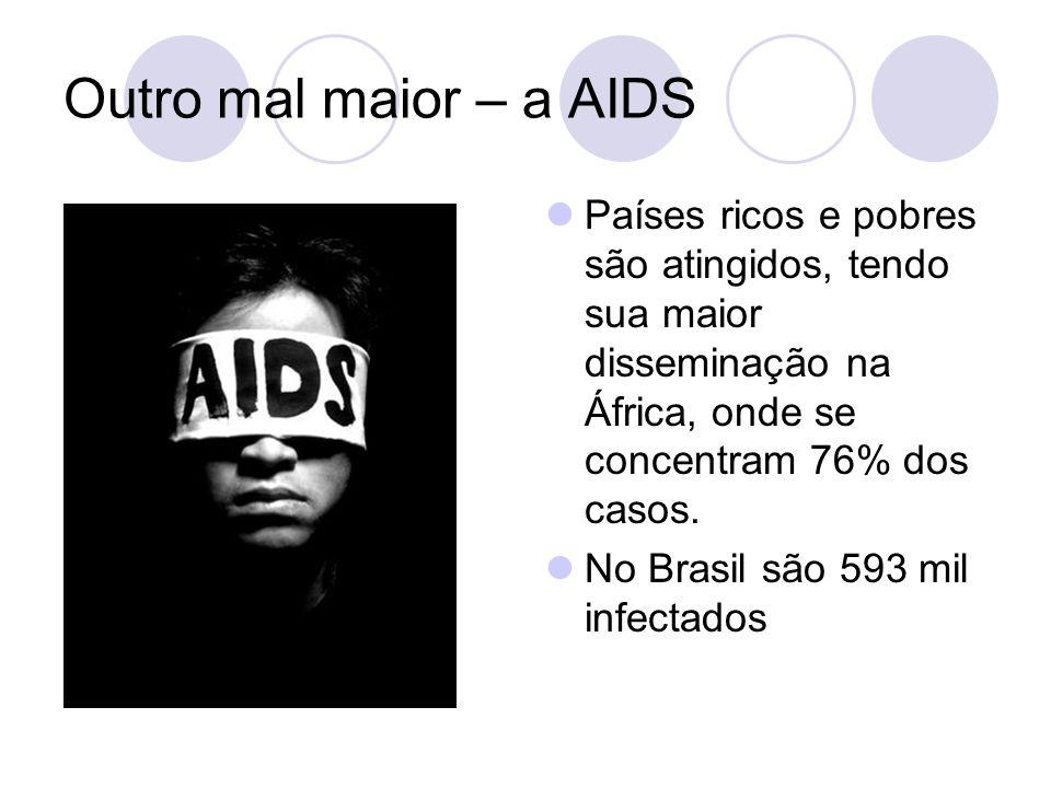 Outro mal maior – a AIDS Países ricos e pobres são atingidos, tendo sua maior disseminação na África, onde se concentram 76% dos casos.