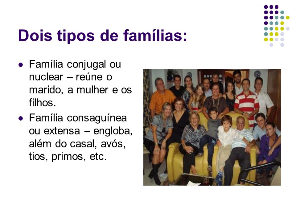 Dois tipos de famílias: Família conjugal ou nuclear – reúne o marido, a mulher e os filhos. Família consaguínea ou extensa – engloba, além do casal, a