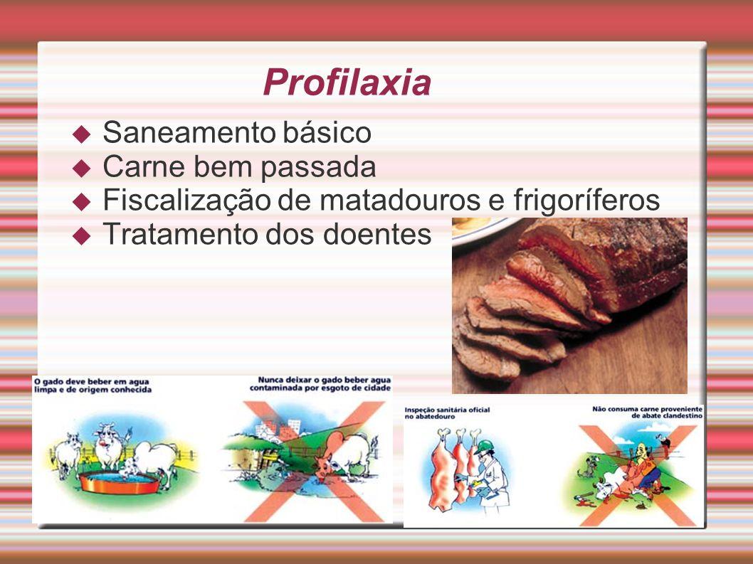 Profilaxia Saneamento básico Carne bem passada Fiscalização de matadouros e frigoríferos Tratamento dos doentes