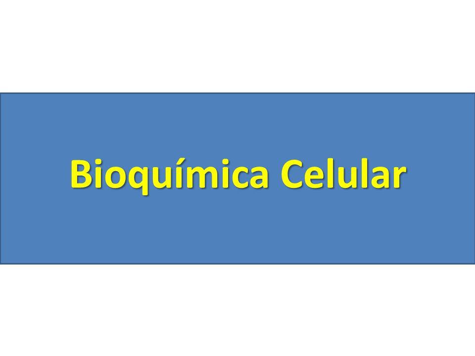 Bioquímica Celular