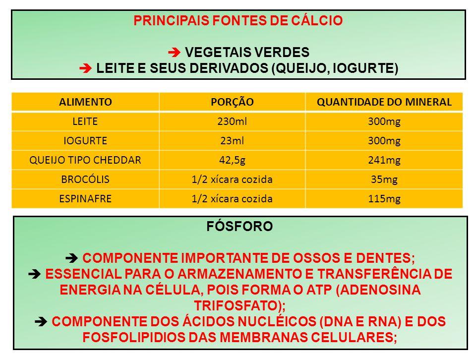 PRINCIPAIS FONTES DE CÁLCIO VEGETAIS VERDES LEITE E SEUS DERIVADOS (QUEIJO, IOGURTE) ALIMENTOPORÇÃOQUANTIDADE DO MINERAL LEITE230ml300mg IOGURTE23ml30