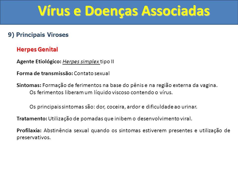 Vírus e Doenças Associadas 9) Principais Viroses Herpes Genital Agente Etiológico: Herpes simplex tipo II Forma de transmissão: Contato sexual Sintomas: Formação de ferimentos na base do pênis e na região externa da vagina.