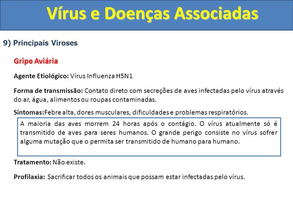 Vírus e Doenças Associadas 9) Principais Viroses Gripe Aviária Agente Etiológico: Vírus Influenza H5N1 Forma de transmissão: Contato direto com secreç