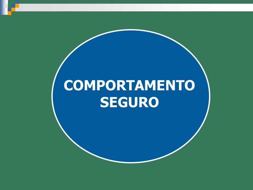 COMPORTAMENTO SEGURO