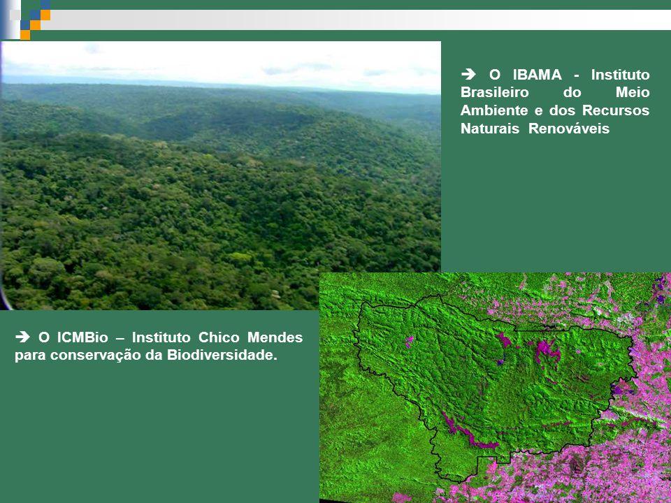 O IBAMA - Instituto Brasileiro do Meio Ambiente e dos Recursos Naturais Renováveis O ICMBio – Instituto Chico Mendes para conservação da Biodiversidad