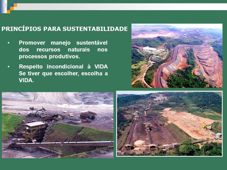 Promover manejo sustentável dos recursos naturais nos processos produtivos. Respeito incondicional à VIDA Se tiver que escolher, escolha a VIDA. PRINC