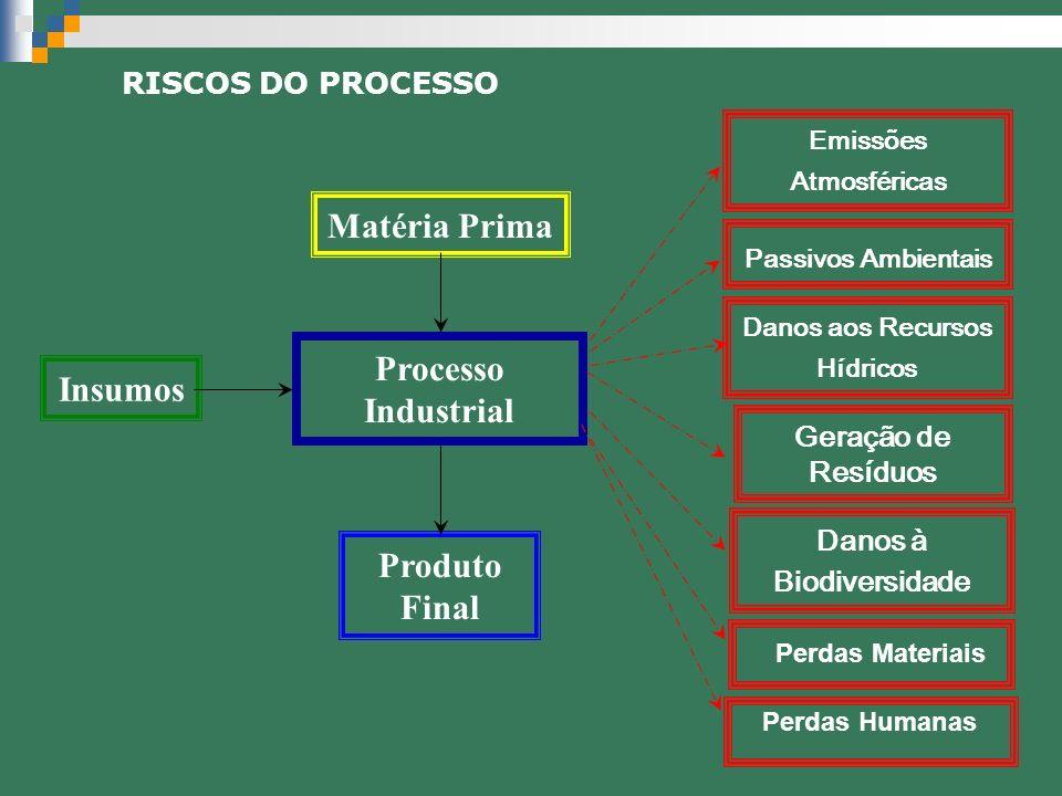 RISCOS DO PROCESSO Insumos Matéria Prima Processo Industrial Produto Final Geração de Resíduos Danos à Biodiversidade Passivos Ambientais Emissões Atm