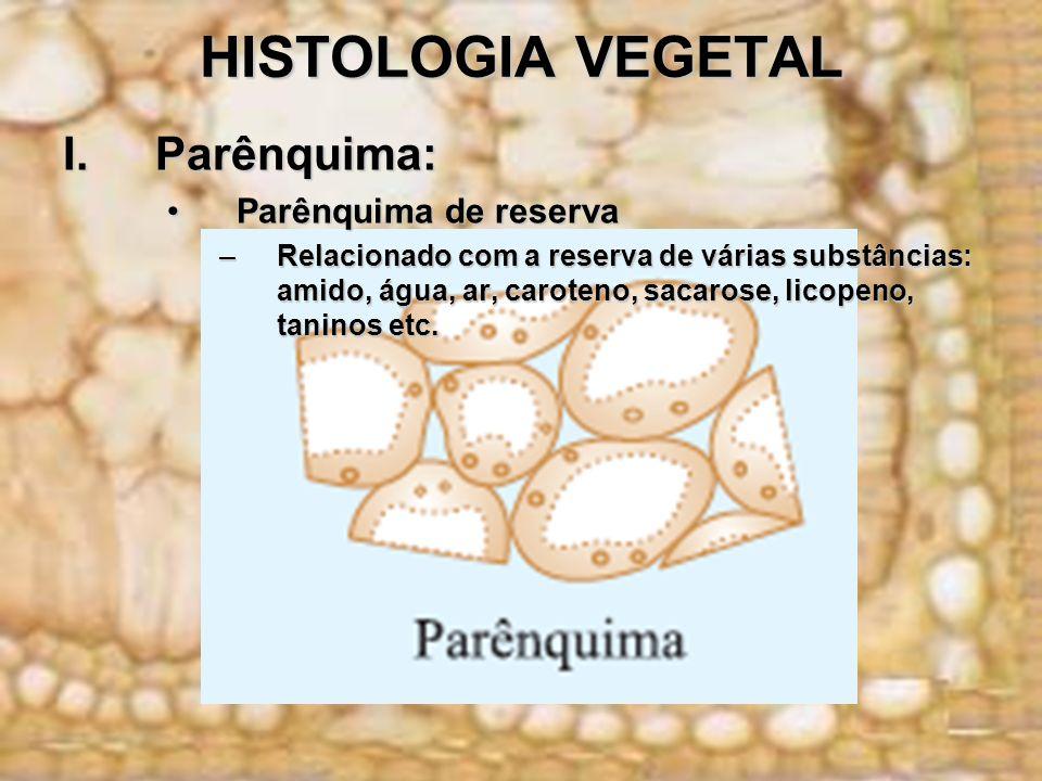 HISTOLOGIA VEGETAL I.Parênquima: Parênquima de reservaParênquima de reserva –Relacionado com a reserva de várias substâncias: amido, água, ar, caroten