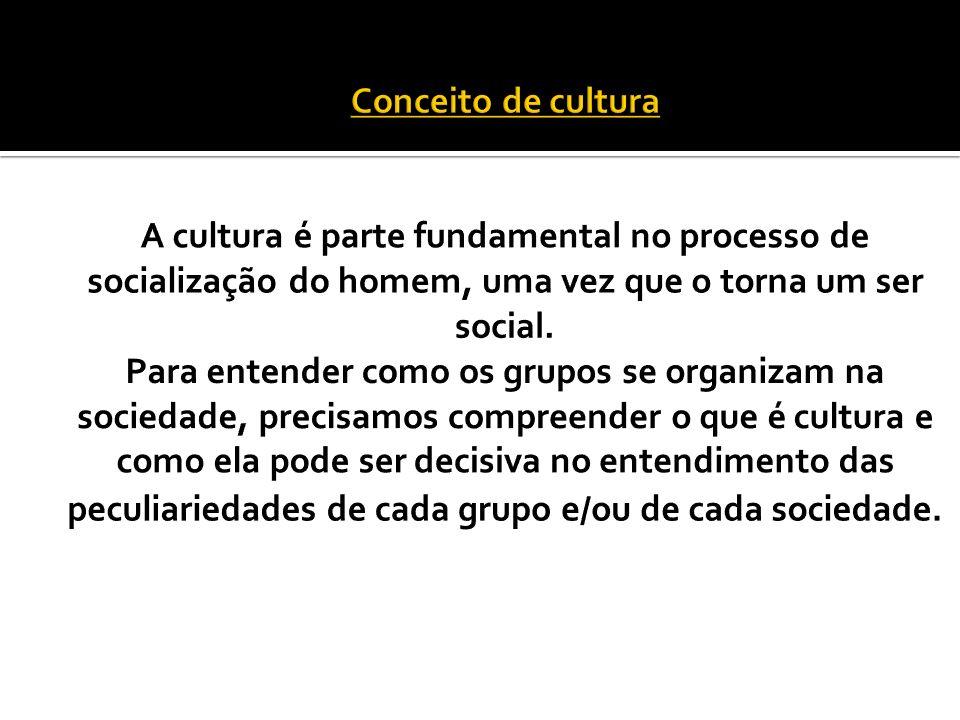 A cultura é também chamada de herança social Onde não há escolas – educação informal ou assistemática Onde há – educação formal ou sistemática