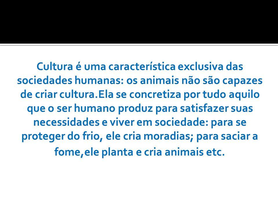 4- Padrões culturais – é um conjunto de normas que regem o comportamento dos indivíduos de determinada cultura ou sociedade.