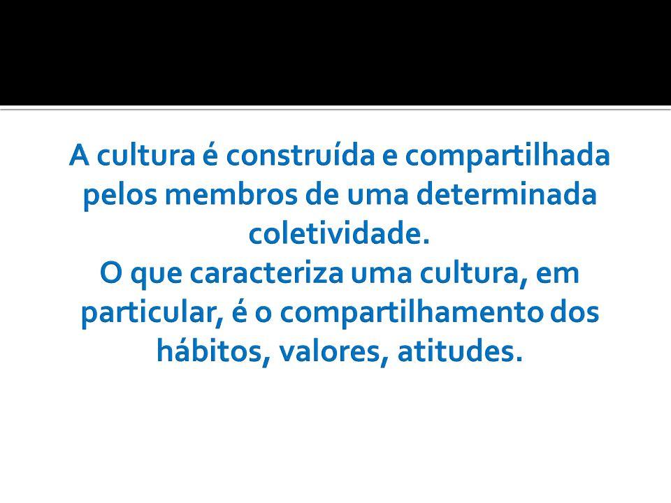 As diferenças significativas no interior de uma cultura caracterizam uma subcultura.