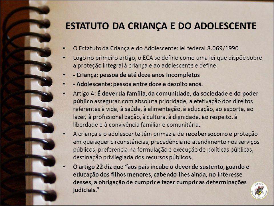 ESTATUTO DA CRIANÇA E DO ADOLESCENTE O Estatuto da Criança e do Adolescente: lei federal 8.069/1990 Logo no primeiro artigo, o ECA se define como uma
