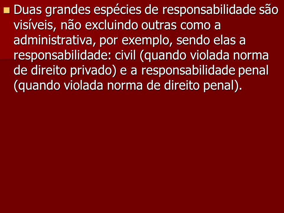 Duas grandes espécies de responsabilidade são visíveis, não excluindo outras como a administrativa, por exemplo, sendo elas a responsabilidade: civil