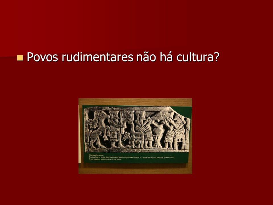 Povos rudimentares não há cultura? Povos rudimentares não há cultura?