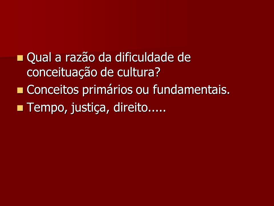 Qual a razão da dificuldade de conceituação de cultura? Qual a razão da dificuldade de conceituação de cultura? Conceitos primários ou fundamentais. C