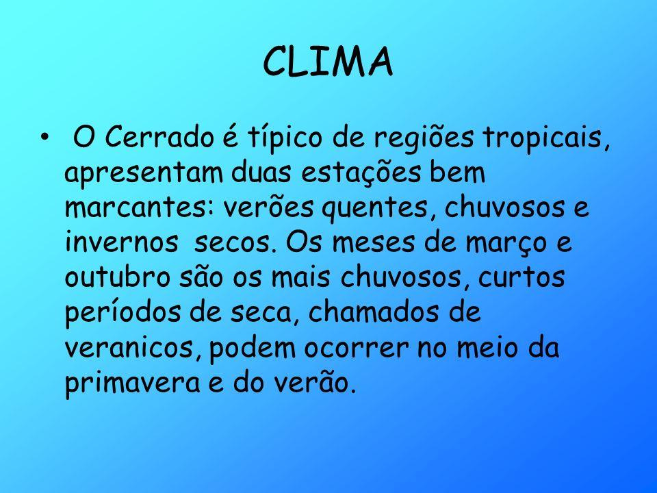CLIMA O Cerrado é típico de regiões tropicais, apresentam duas estações bem marcantes: verões quentes, chuvosos e invernos secos. Os meses de março e