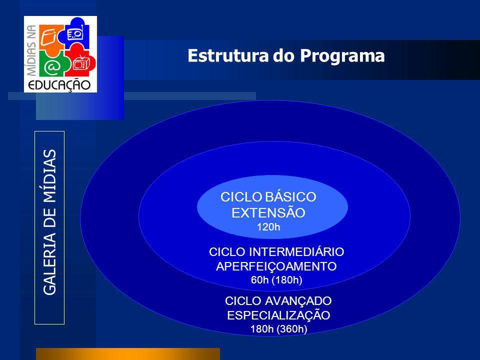 Estrutura do Programa CICLO BÁSICO EXTENSÃO 120h CICLO INTERMEDIÁRIO APERFEIÇOAMENTO 60h (180h) CICLO AVANÇADO ESPECIALIZAÇÃO 180h (360h) GALERIA DE MÍDIAS
