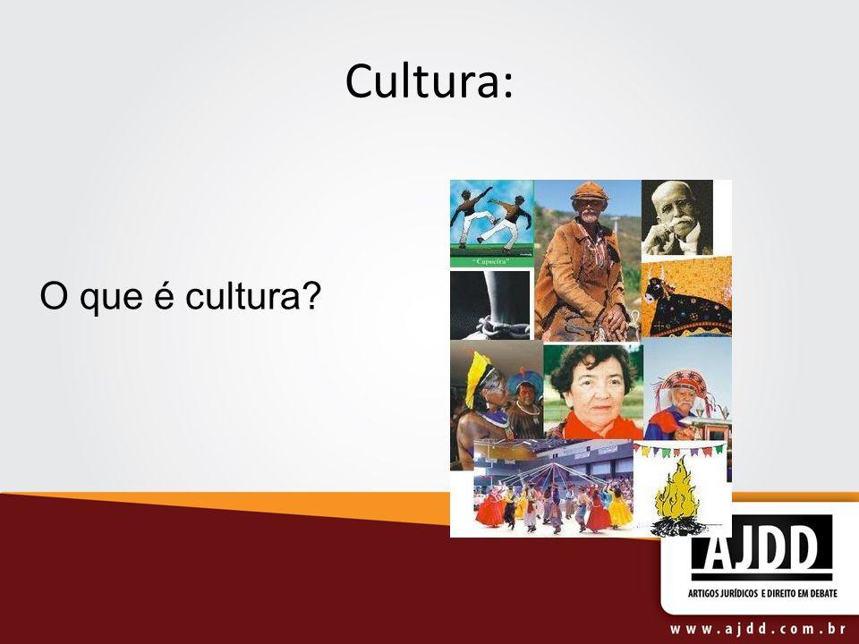 Cultura: O que é cultura?