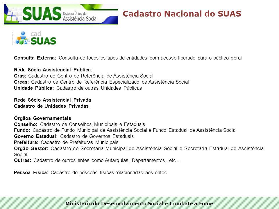 Ministério do Desenvolvimento Social e Combate à Fome Cadastro Nacional do SUAS Consulta Externa: Consulta de todos os tipos de entidades com acesso l