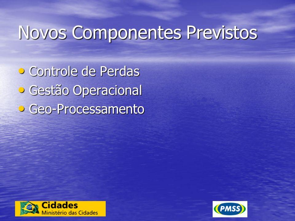 Novos Componentes Previstos Controle de Perdas Controle de Perdas Gestão Operacional Gestão Operacional Geo-Processamento Geo-Processamento