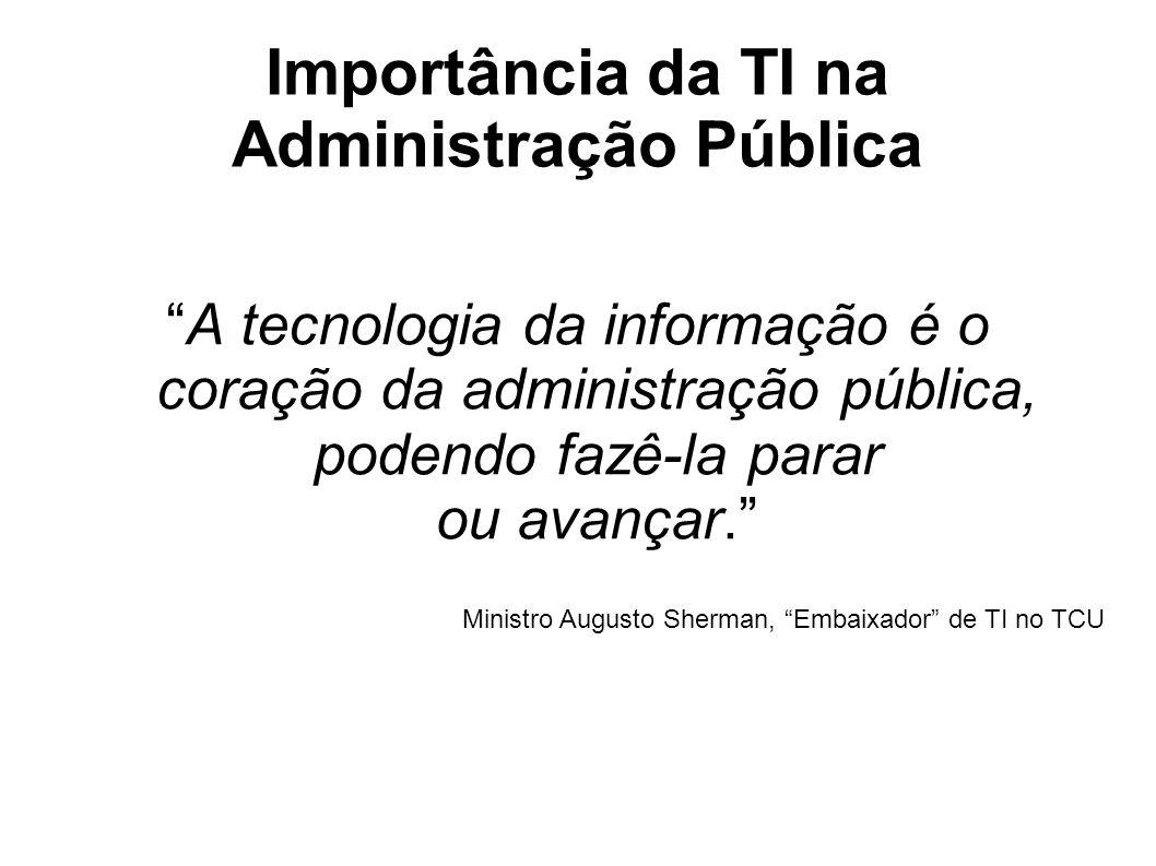Importância da TI na Administração Pública A tecnologia da informação é o coração da administração pública, podendo fazê-la parar ou avançar.