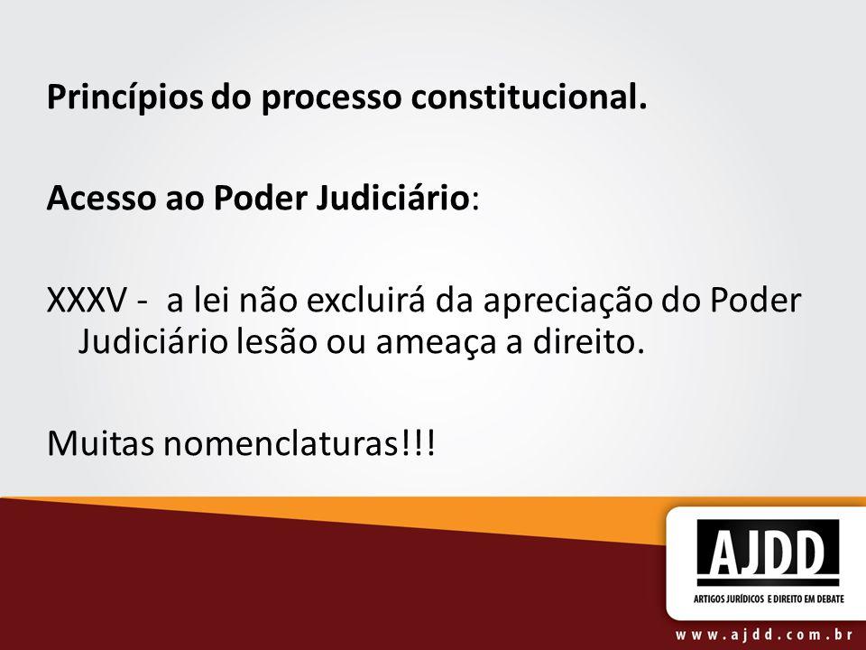Princípios do processo constitucional. Acesso ao Poder Judiciário: XXXV - a lei não excluirá da apreciação do Poder Judiciário lesão ou ameaça a direi
