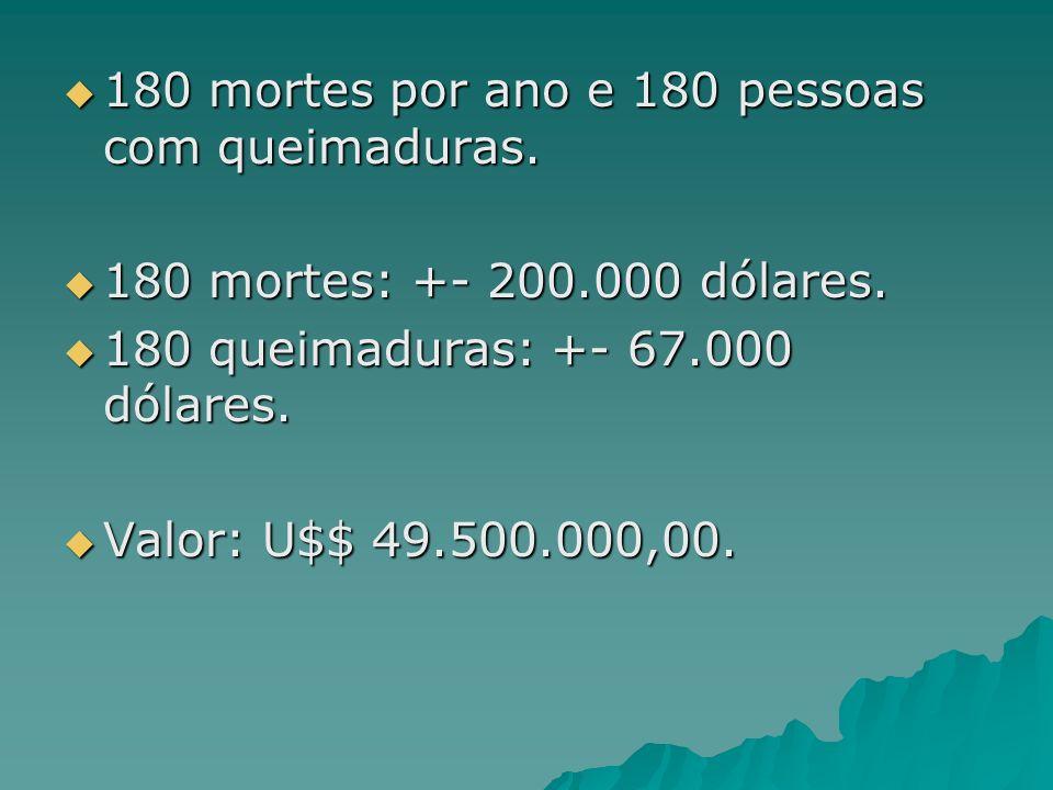 180 mortes por ano e 180 pessoas com queimaduras. 180 mortes por ano e 180 pessoas com queimaduras. 180 mortes: +- 200.000 dólares. 180 mortes: +- 200