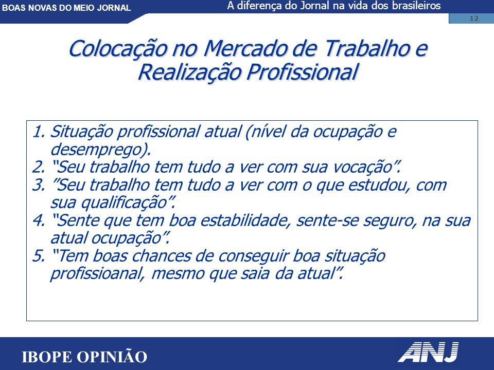 BOAS NOVAS DO MEIO JORNAL 12 Colocação no Mercado de Trabalho e Realização Profissional 1.Situação profissional atual (nível da ocupação e desemprego).