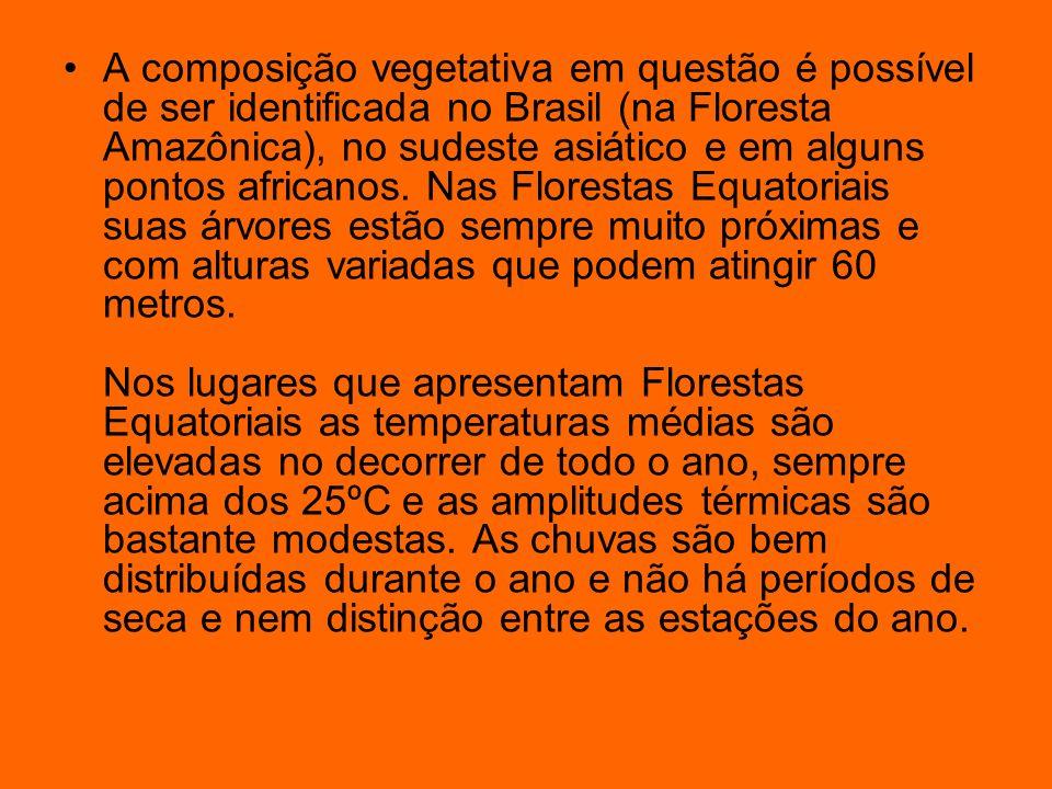 A composição vegetativa em questão é possível de ser identificada no Brasil (na Floresta Amazônica), no sudeste asiático e em alguns pontos africanos.