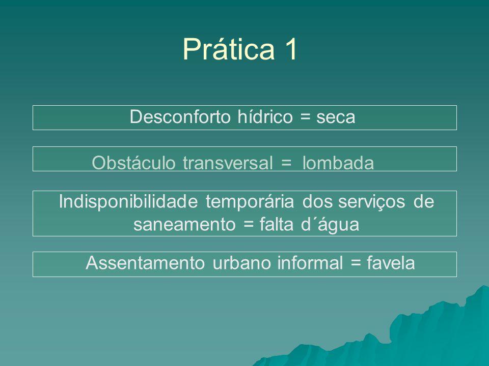Prática 1 Obstáculo transversal = lombada Desconforto hídrico = seca Indisponibilidade temporária dos serviços de saneamento = falta d´água Assentamento urbano informal = favela