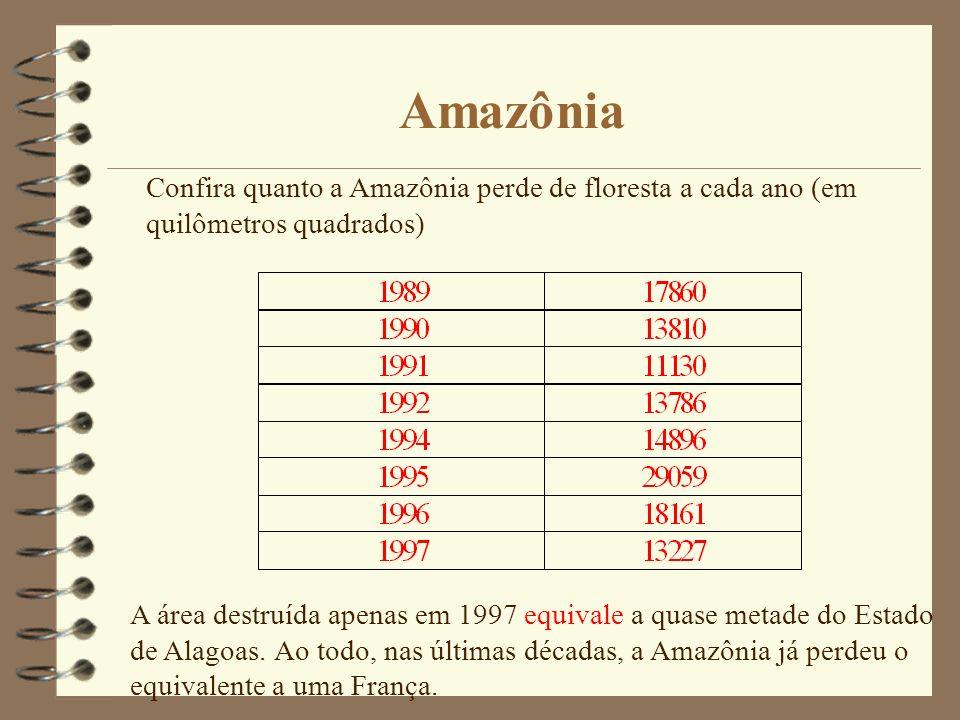 Amazônia Confira quanto a Amazônia perde de floresta a cada ano (em quilômetros quadrados) A área destruída apenas em 1997 equivale a quase metade do