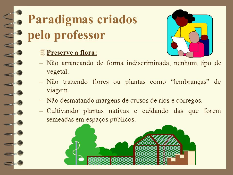Paradigmas criados pelo professor 4Preserve a flora: –Não arrancando de forma indiscriminada, nenhum tipo de vegetal. –Não trazendo flores ou plantas