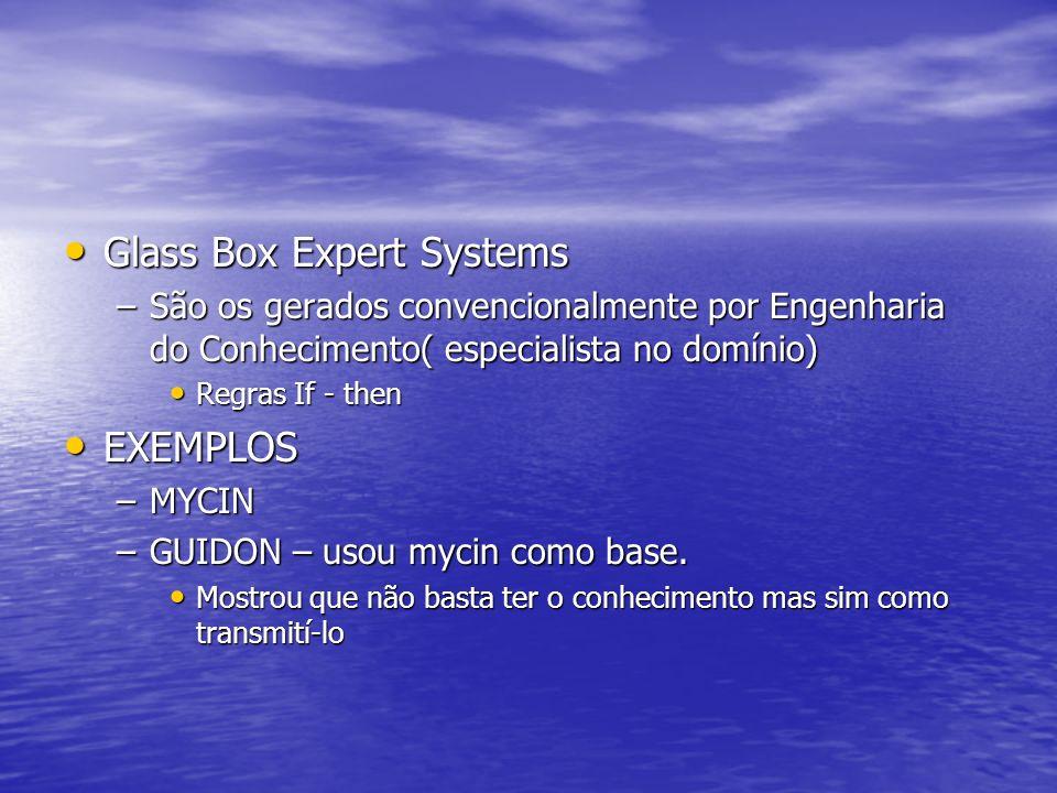 Glass Box Expert Systems Glass Box Expert Systems –São os gerados convencionalmente por Engenharia do Conhecimento( especialista no domínio) Regras If