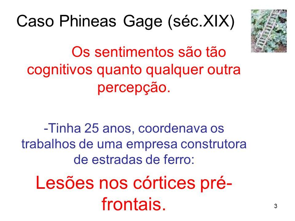 3 Caso Phineas Gage (séc.XIX) Os sentimentos são tão cognitivos quanto qualquer outra percepção. -Tinha 25 anos, coordenava os trabalhos de uma empres