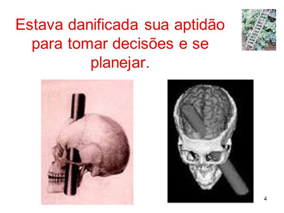 15 Referências: Damásio, A.R. (1994): Descartes Error: emotion, reason and the human brain.