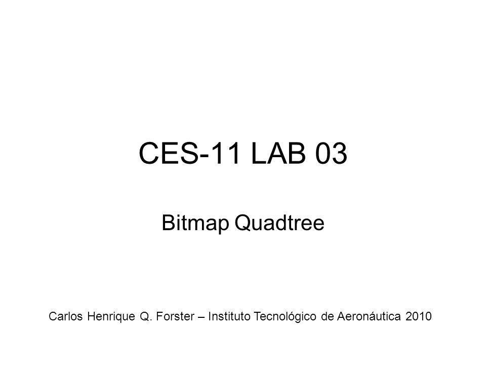 CES-11 LAB 03 Bitmap Quadtree Carlos Henrique Q. Forster – Instituto Tecnológico de Aeronáutica 2010