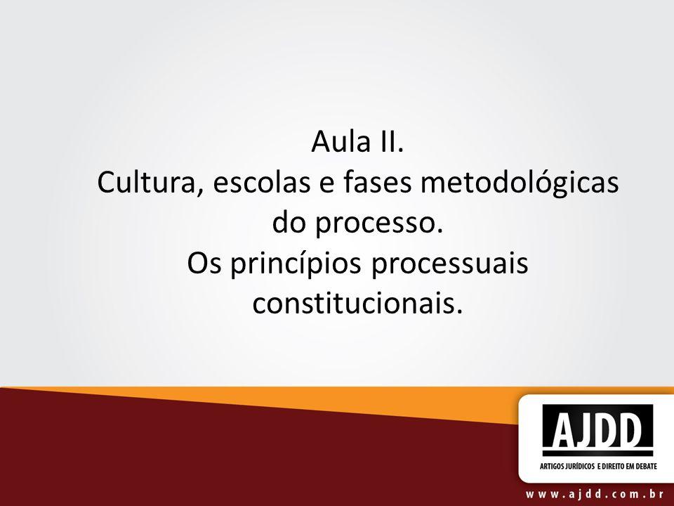 Aula II. Cultura, escolas e fases metodológicas do processo. Os princípios processuais constitucionais.