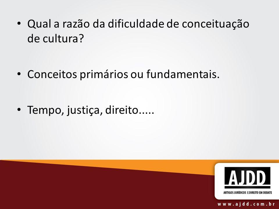Qual a razão da dificuldade de conceituação de cultura? Conceitos primários ou fundamentais. Tempo, justiça, direito.....
