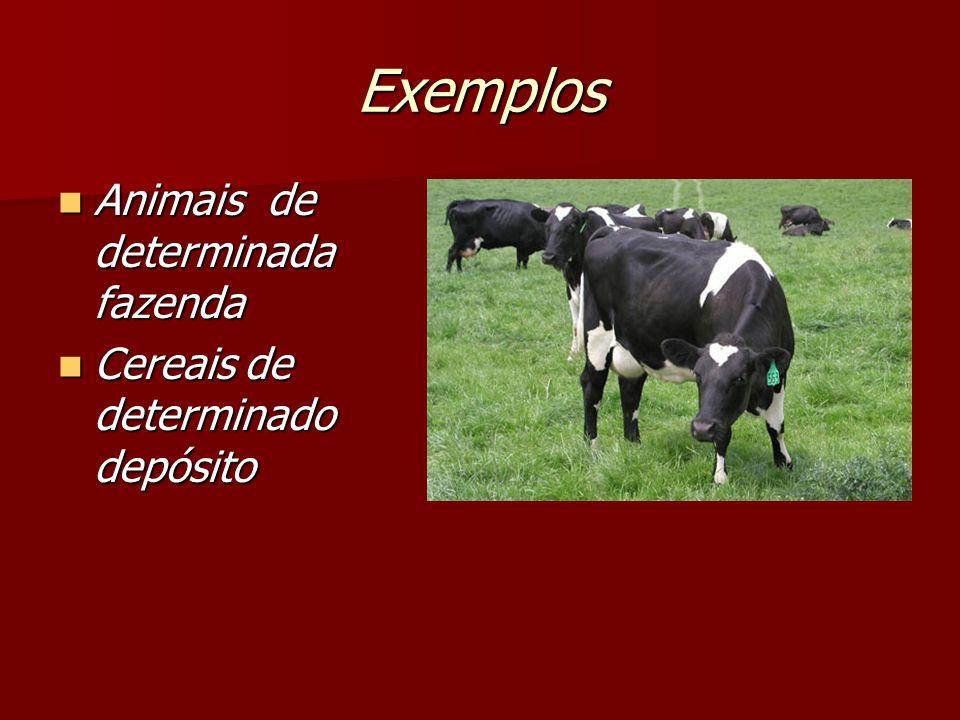 Exemplos Animais de determinada fazenda Animais de determinada fazenda Cereais de determinado depósito Cereais de determinado depósito