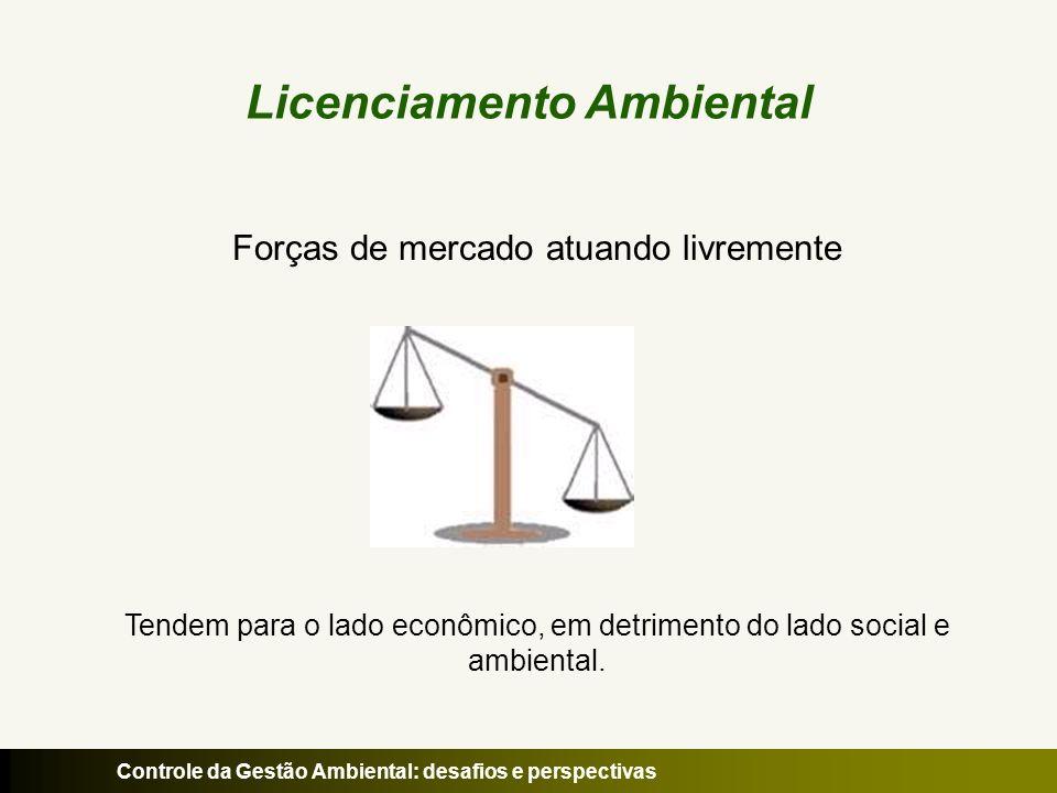 Controle da Gestão Ambiental: desafios e perspectivas Licenciamento Ambiental Forças de mercado + Estado (papel regulador e facilitador) Licenciamento Ambiental => Relação equilibrada e sustentável livre iniciativa + meio ambiente