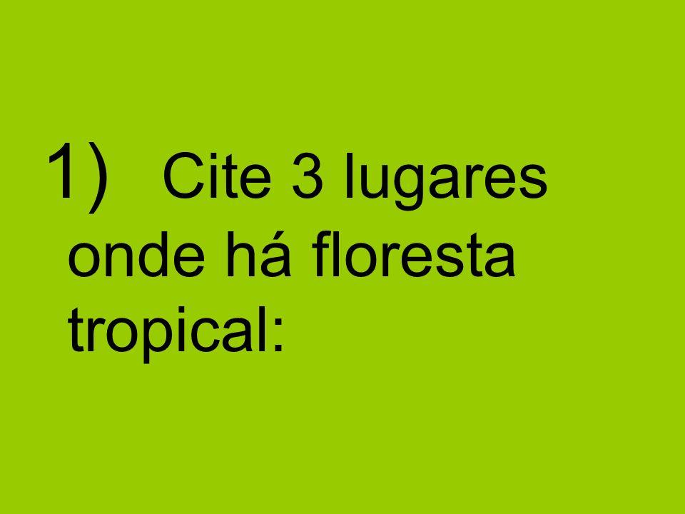 1) Cite 3 lugares onde há floresta tropical: