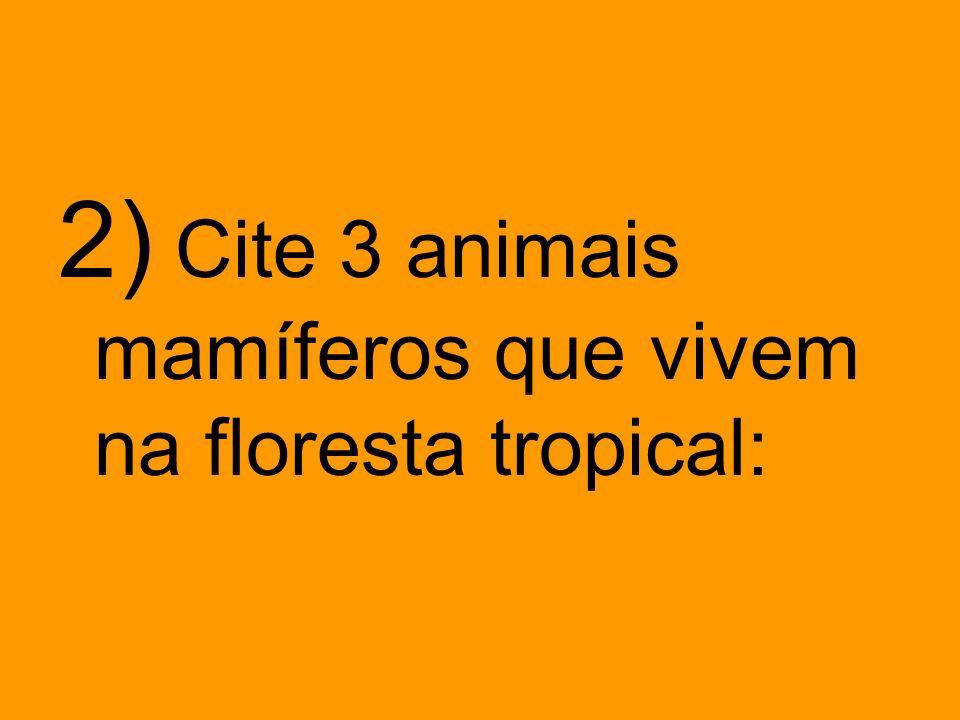 2) Cite 3 animais mamíferos que vivem na floresta tropical: