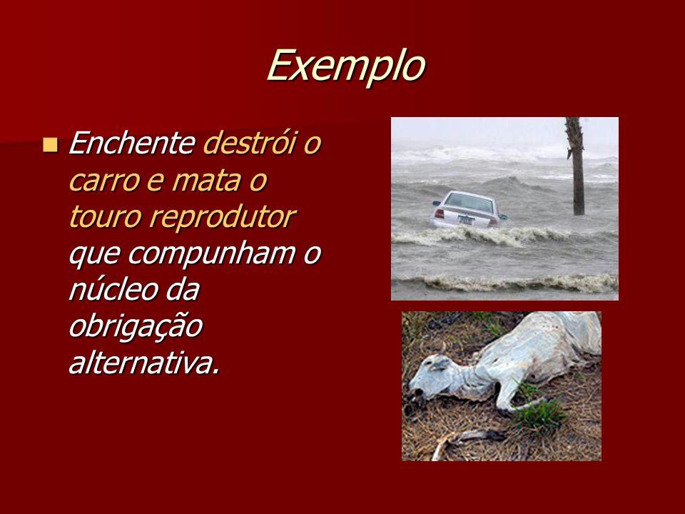 Exemplo Enchente destrói o carro e mata o touro reprodutor que compunham o núcleo da obrigação alternativa. Enchente destrói o carro e mata o touro re