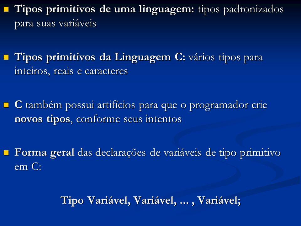 Tipos primitivos de uma linguagem: tipos padronizados para suas variáveis Tipos primitivos de uma linguagem: tipos padronizados para suas variáveis Ti