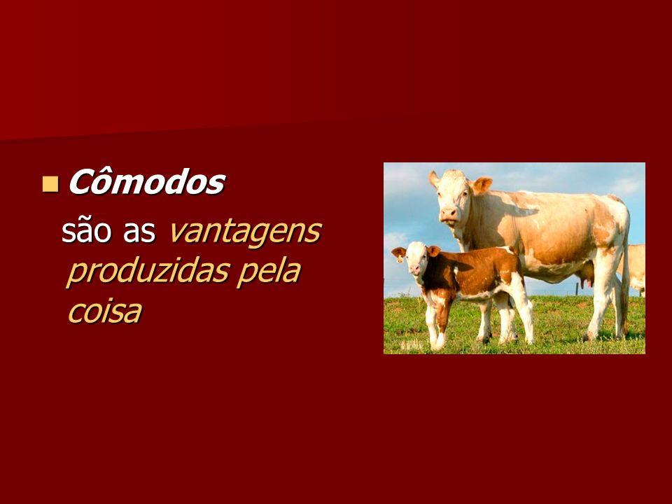 Cômodos Cômodos são as vantagens produzidas pela coisa são as vantagens produzidas pela coisa